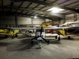 Chicks in the hangar overnight